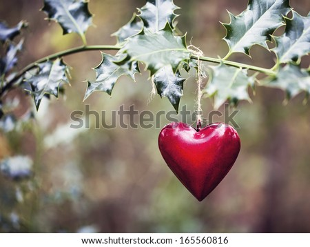 Red heart decoration on the holly branch - stock photo