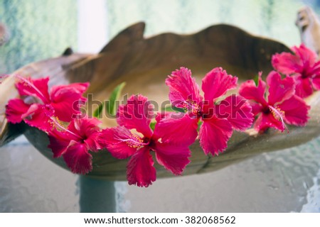 Red hibiscus and wooden vessel-4 - stock photo