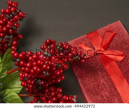 Red holiday seeds and present/Christmas Gift/Present with holly berries