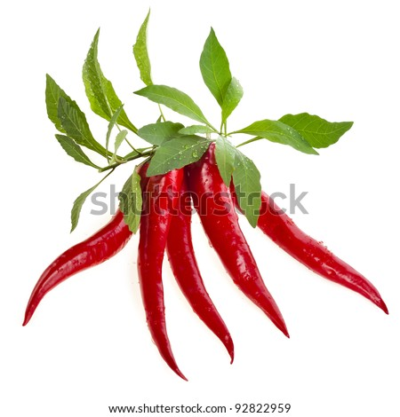 red hot peppers with leaf  isolated on white background
