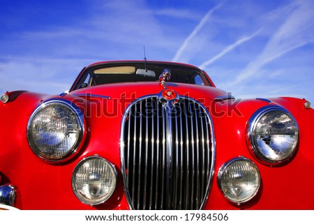 red jaguar - stock photo