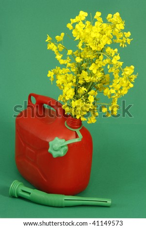 Red jerrycan with blooming rapeseed on green background