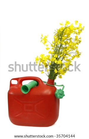 Red jerrycan with yellow blooming rapeseed - isolated on white background