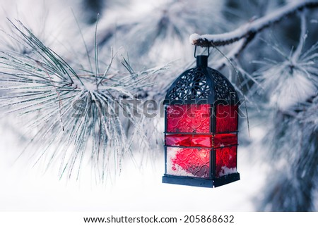 Red lantern on the snowy tree - stock photo