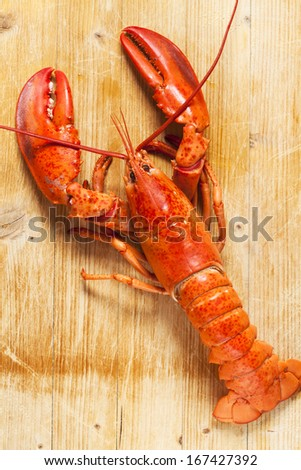 Red lobster on wooden table - stock photo