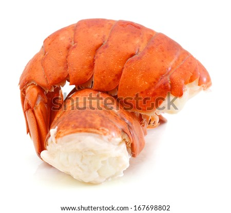 red lobster tail  - stock photo