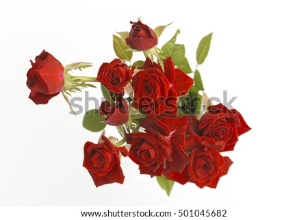 Red love roses flowers bouquet close up on a white background