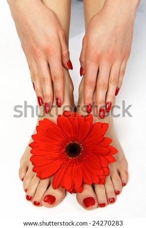Red manicure and pedicure with delicate gerbera - stock photo