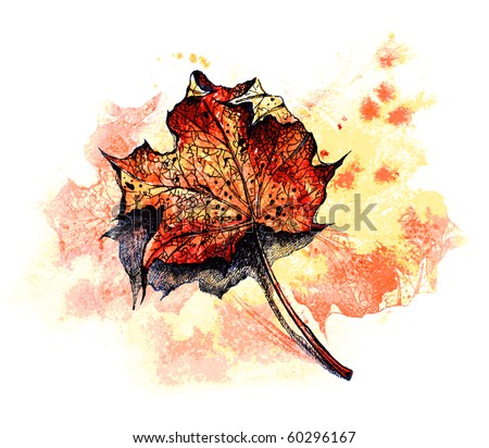 red maple leaf on the ground - watercolor background -- for VECTOR version visit my portfolio - stock photo