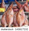 red mullets (Mullus surmuletus) , fish market - stock photo