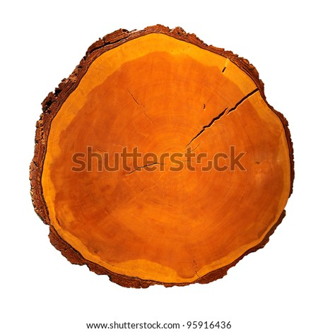 Red old wooden stump isolated on white background - stock photo