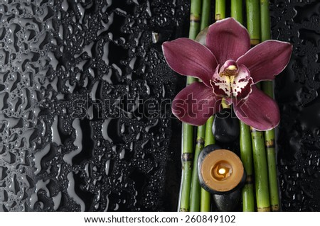 red orchid and bamboo grove, candle on wet black background  - stock photo