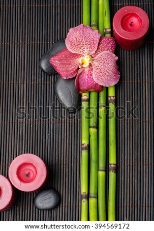 red orchid and bamboo grove ,candle, stoneâ??black background - stock photo