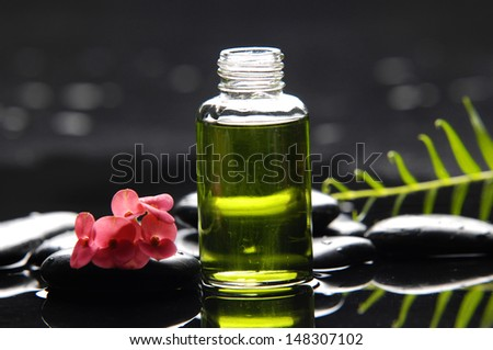 Red orchid and fern leaf with massage oil with therapy stones