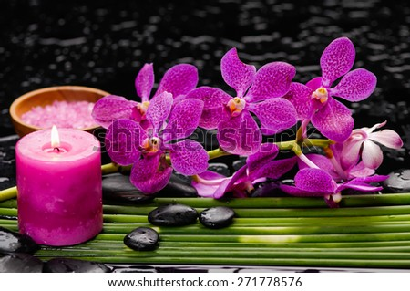 Red orchid and stones with bamboo grove on wet background - stock photo