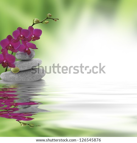 red orchid on stone reflecting in water - stock photo