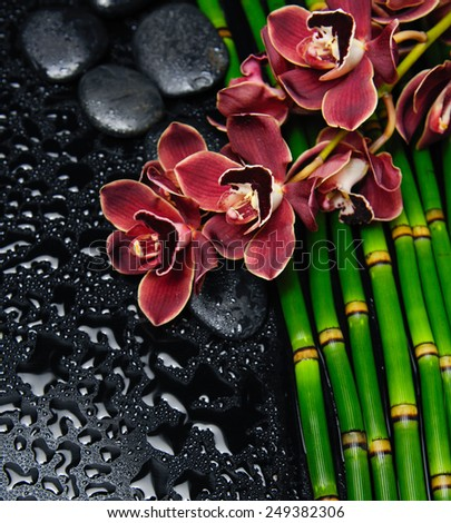 Red orchid with stones on bamboo grove on wet  - stock photo