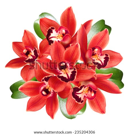 red orchids bouquet isolated on white  - stock photo