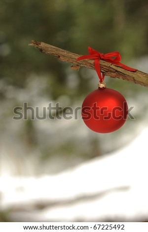 Red ornament hanging from a branch in the woods - stock photo