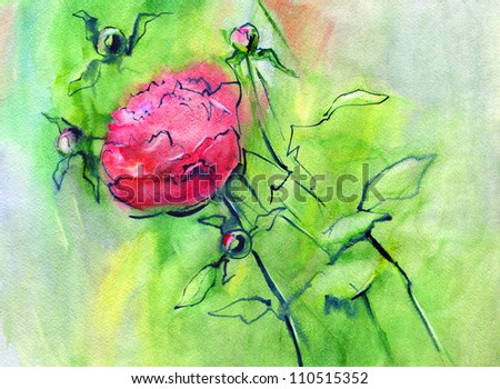 Red peony. Watercolor. - stock photo