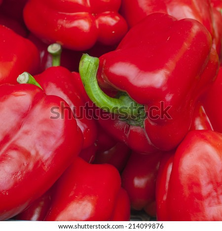 red Pepper on red background  - stock photo