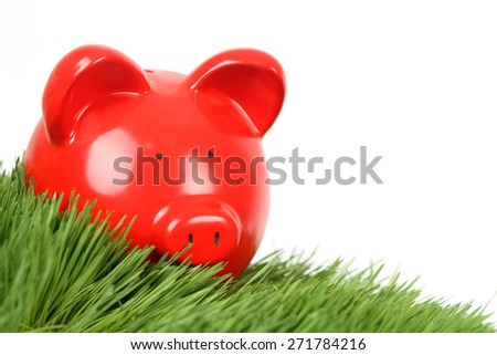 Red Piggy Bank on grass on White Background - stock photo
