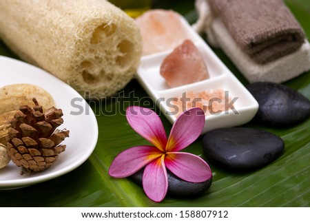 Red/pink frangipani with salt soap crystal - stock photo