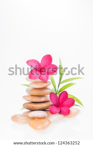 Red plumeria flowers on yellow river stones and a bamboo plant at the background - stock photo