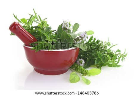 Red porcelain mortar and pestle with fresh herbs - stock photo