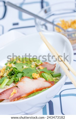 Red Pork Noodle Soup in the dish - stock photo