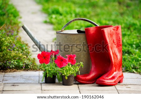 Red rain boots, flowers and watering can in the sun light - stock photo