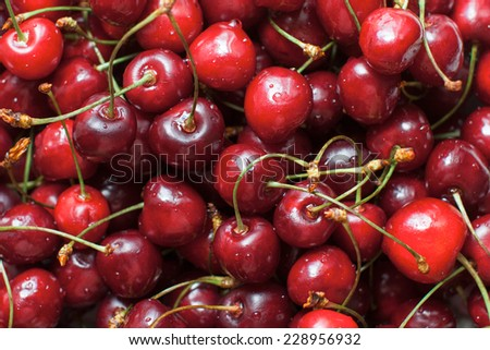 Red ripe delicious cherries background