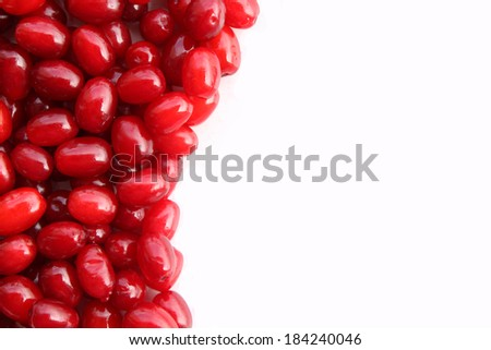 Red ripe fresh cranberries close up with copy space on white background - stock photo