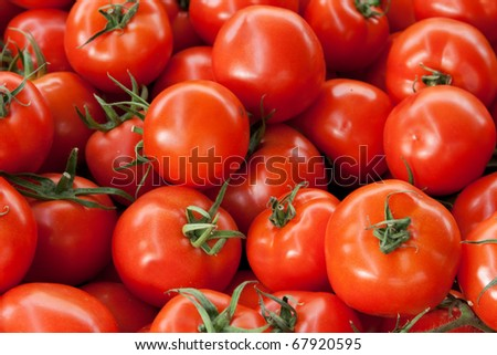 Red ripe tomatoes background with green roots - stock photo
