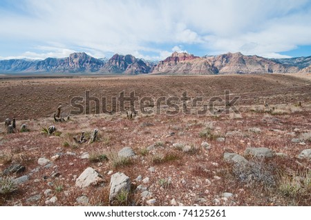 Red Rock Canyon in early spring, Nevada - stock photo