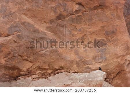 Red rock formation with a perched blackbird  - stock photo