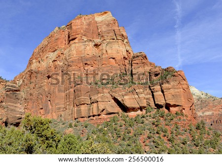 Red rock landscape in Zion National Park, Utah - stock photo