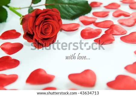 Red rose and little hears on white background. Space for your text