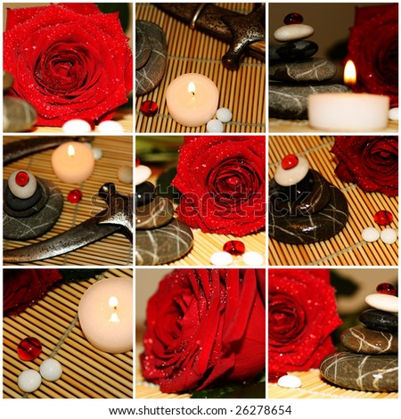 Red rose and silver dagger set - stock photo