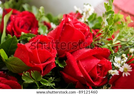 Red rose bouquet with water drop