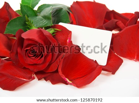 Red rose in petals with a congratulatory card isolated on white