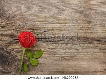 Red rose on wooden background. Blank board, copy space - stock photo