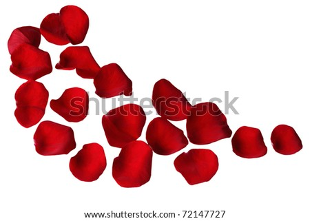 Red rose petals on a curve - stock photo