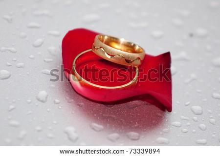 Red rose - wedding concept - congratulations - stock photo