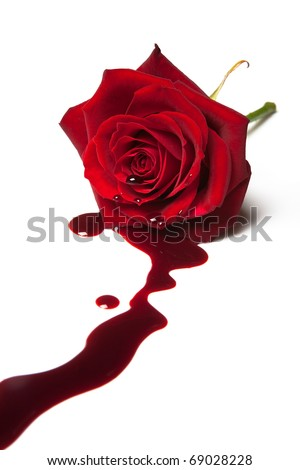 Red rose with blood flowing out of its heart - stock photo