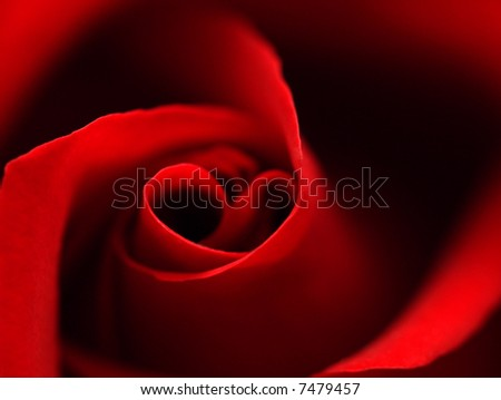 Red rose with heart symbol in center. close-up #2 - stock photo