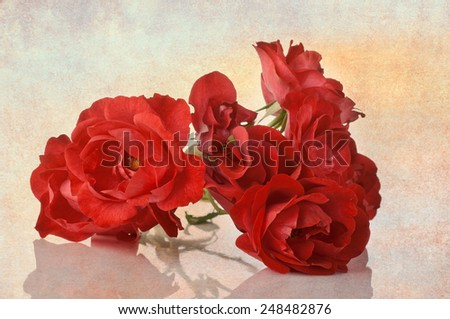 Red roses blended with a textured background for a more painterly feel - stock photo