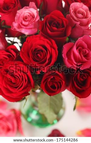 red roses in vase - stock photo