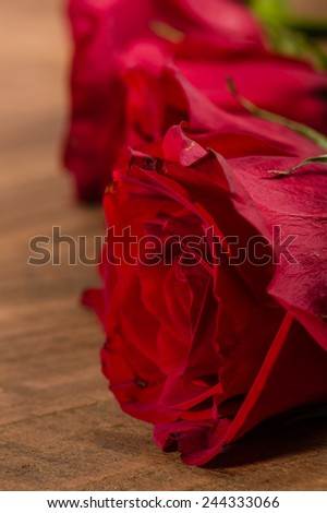 Red roses lined up on a wooden table - stock photo