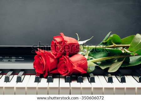 red roses on piano keys with copy-space - stock photo